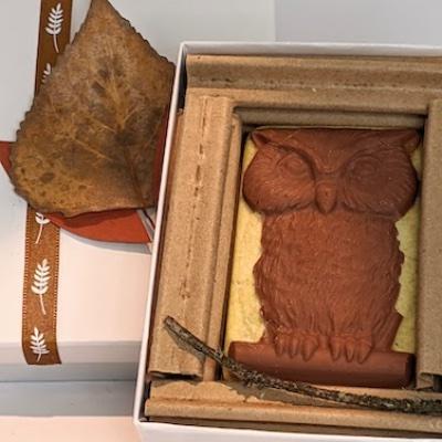 Animal: Owl