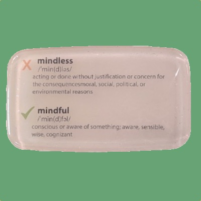 Mindful, Not Mindless